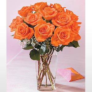 12 LONG STEM ORANGE ROSES