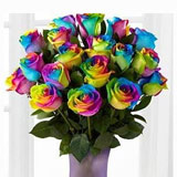 12Rainbow Roses with Chocolate Box