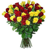 24 Yellow and Red Roses Bouquet