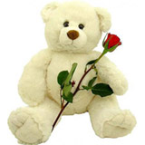 Big teddy with red rose