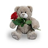 Hug 35Cm Red Rose