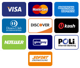 We accept Paypal, Credit Cards - Visa,px Mastercard, American Express (Amex) and Discover and Google Checkout.